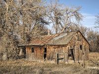 abandoned farm building in northern Colorado