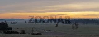 Winterliche Morgenröte im Ried