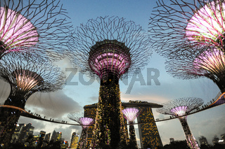 Singapur, Republik Singapur, Abendstimmung im Supertree Grove des Gardens by the Bay Park