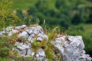 Amazonenfels an der Hauser Wand bei Bad Überkingen
