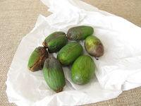 Früchte oder Samen der Nusseibe, Torreya nucifera