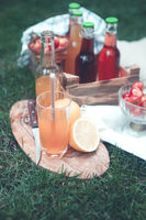 Fresh fruits and drinks on green grass
