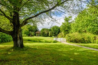 Schlosspark Lütetsburg, Ostfriesland, Niedersachsen, Deutschland