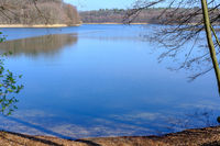 Lake in Early Spring
