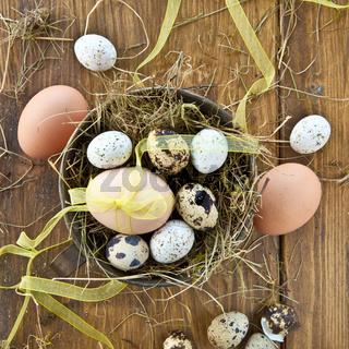 Verschiedene rohe Eier