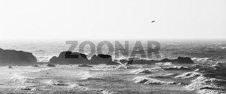 Panoramic view of rough sea in black and white