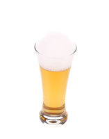 Top view of full beer glass.