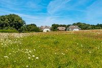 Schöne Ferienhäuser in Ahrenshop, Fischland-Darss, Mecklenburg-Vorpommern, Sommer 2020