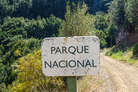 Nationalpark Garajonay auf der Insel La Gomera