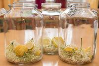 Saft selbst gemacht mit Holunderblüten und Zitrone - Holundersirup