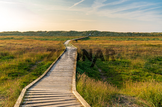Footpath over the Gronant Dunes, Clwyd, Wales, UK