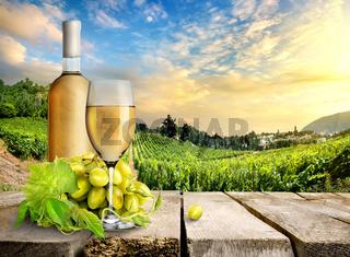 White wine and vineyard