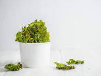 Homemade kale chips ready-to-eat, copy space left