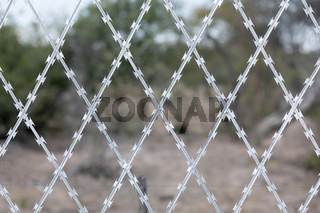 Restricted Area Barbed Fence, security concept