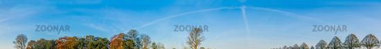 Blauer morgen Himmel mit Bäumen.jpg