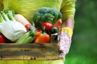Woman wearing gloves with fresh vegetables in the box in her hands