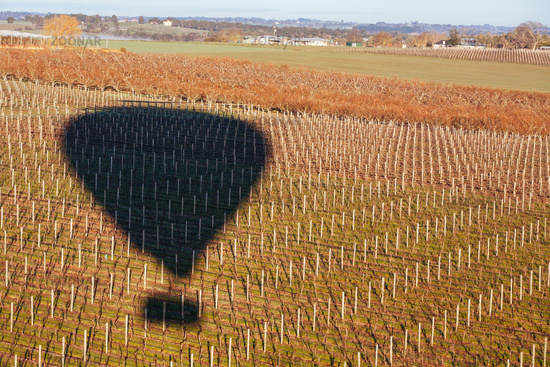 Hot Air Balloon At Sunrise in Australia