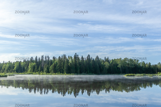 The sky and the forest are reflected in the river.