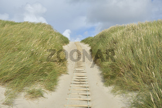 Dune landscape with sandy footpath to the sea in summer