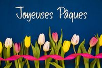 Colorful Tulip, Joyeuses Paques Means Happy Easter, Ribbon, Blue Background