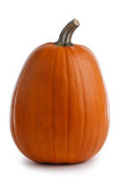 One tall orange pumpkin