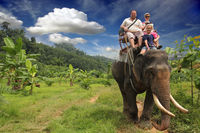 Riding an elephant. A young family with a child ride an elephant.