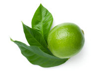 Lime With Leaves Isolated On White Background