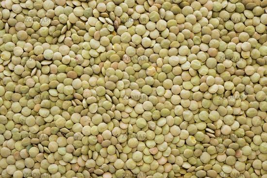 green lentil seeds