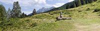 Panorama der Steineckenalm mit Brunnen in Kärnten