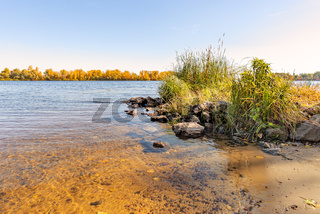 View of willow trees and reeds close to the Dnieper River in Kiev