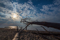 Strand an der Küste der Ostsee bei Graal Müritz