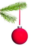 rote Weihnachtsbaumkugel hängt am Tannenzweig