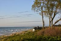 Ostsee - Ahrenshoop