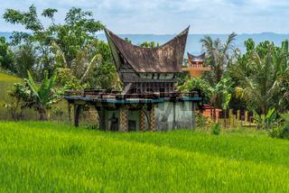 Traditionelles Grab in einem Reisfeld auf der Insel Samosir im Toba-See auf Sumatra