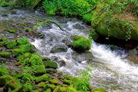 Liebethaler Grund Wasserfall in des Sächsischen Schweiz - Liebethaler Grund Waterfall in Elbe Sandstone Mountains, Saxony
