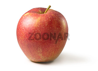Apfel Wellant Freisteller