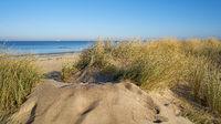 Düne am Strand von Warnemünde an der Ostseeküste