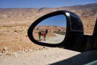 Esel im Seitenspiegel eines Autos