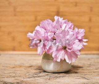 kleine Vase mit rosa Blumen