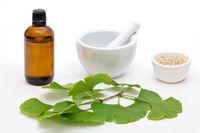 Kräutermedizin aus Ginkgo