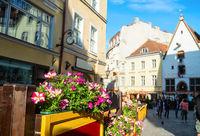 Flowers, old town, Tallinn, Estonia