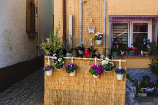 Hanging flower pot garden and traditional house