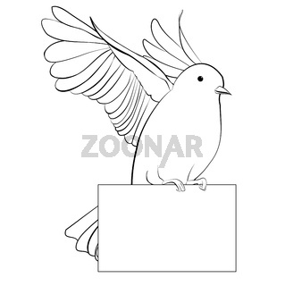 Line dove vector illustration, isolated on white