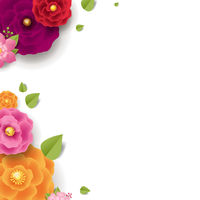 Spring Flowers Isolated White Background