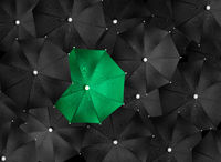 Concept image with lots of black umbrellas and a green umbrella that stands out