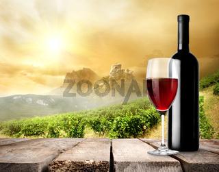 Vineyard and wine