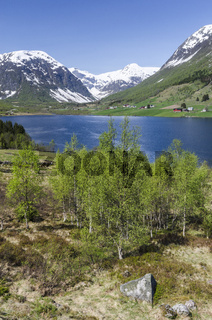 Landschaft am See Dalavatnet, Sogndal, Sogn og Fjordane