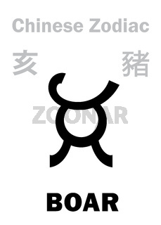 Astrology: PIG (sign of Chinese Zodiac)