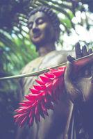 Jungle Buddha Statue With Flower