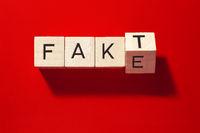Fakt oder Fake_01.tif